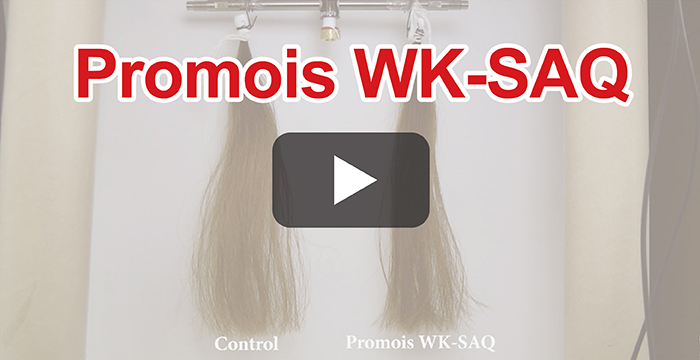 Peptides derivative for hair treatment – Experimental test of Promois WK-SAQ