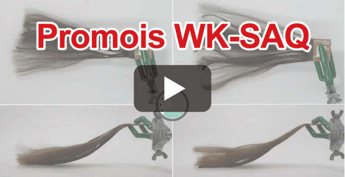 【Cosmetic ingredients explained】Quick dry effect for hair with Promois WK-SAQ